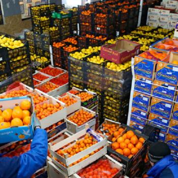 Rastamozhka-fruktov-i-ovoshhej-v-Har'kove1